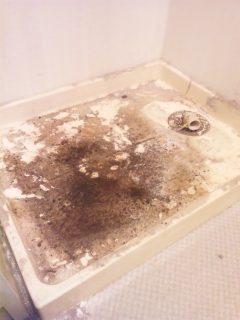 ハウスクリーニング 広島 洗面所